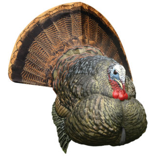 Avian-X Turkey Decoy LCD Strutter Tom AVX8004