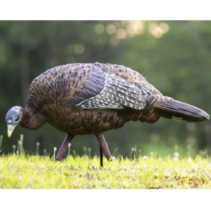 Avian-X Turkey Decoy LCD Feeder Hen AVX8007