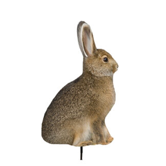 Montana Decoy Miss Hoptober Rabbit 0036