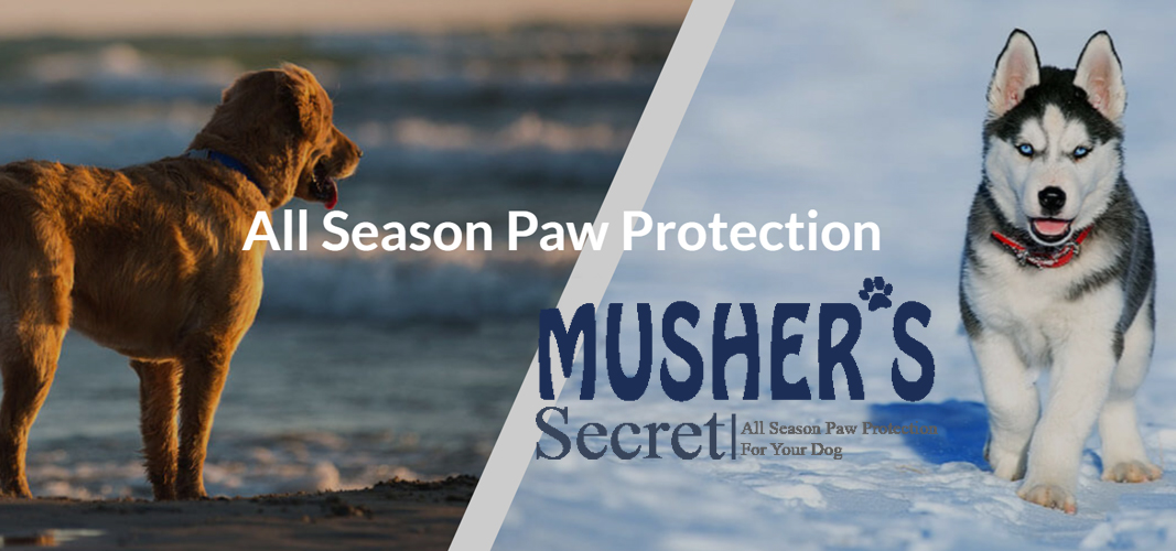Mushers Secret Paw Protection